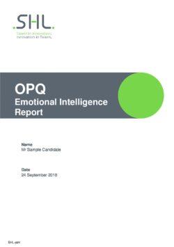 SHL OPQ32 Emotional Intelligence Report